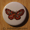 Vintage Butterfly 6 Button Badge